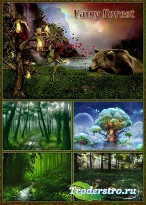 Фоны - Сказочный лес