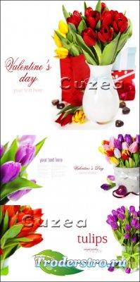 Разноцветные тюльпаны к празднику Святого Валентина