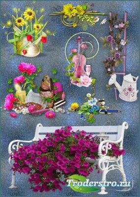 Клипарт - Цветочный декор