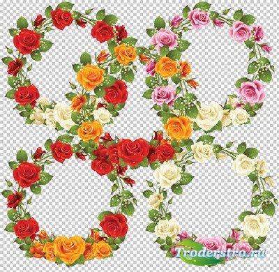 Клипарт -  Рамки вырезы из роз прозрачный фон