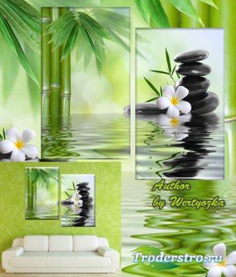 Спа камни, бамбуковые ветки, белая франжипани - Диптих в psd формате, модул ...