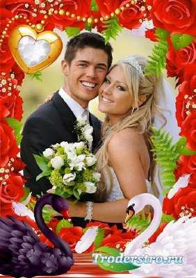 Свадебная фото рамка с красными розами и лебедями