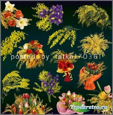 Цветочный клипарт для фотошопа - Мимоза, ветки и букеты с мимозой