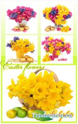 Пасхальные композиции, цветы - Растровый клипарт