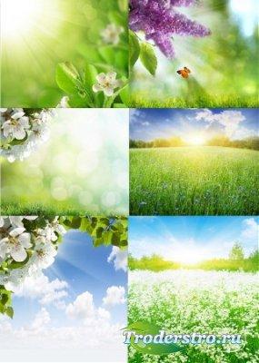 Растровый клипарт - Летние пейзажи
