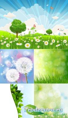 Летняя поляна с ромашками (Вектор)