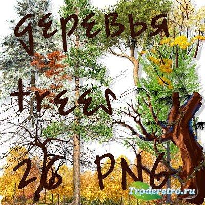 Клипарт - Различные деревья