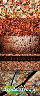 Природные текстуры / Textures Nature