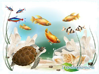 Многослойный PSD исходник для оформления коллажей и фото - Подводный мир мо ...