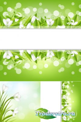 White flowers of snowdrops (Vector)