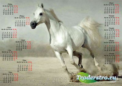Календарь - Восхитительная лошадь