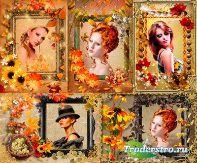 Рамки для фото – Осень золотая