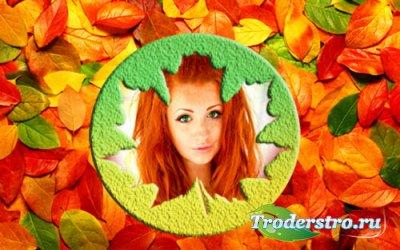 Рамка для фотомонтажа - Осенний лист
