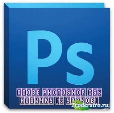 Adobe Photoshop CS5 новичку (8 уроков) (2013)