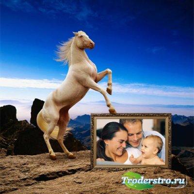 Рамка для фото - Игривая лошадка на прекрасном фоне