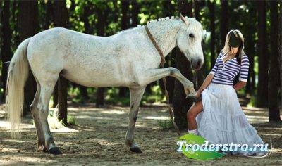 Шаблон женский - Фотография с красивой лошадью