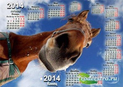 Красивый календарь - Со смешной лошадью