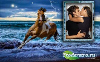 Рамка для фотошопа - Скачущая лошадь у моря