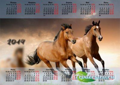 Настенный календарь - Пара красивых лошадей