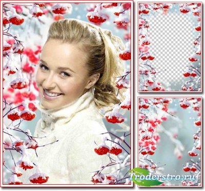 Зимняя рамка для фотошопа – Гроздья рябины