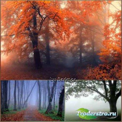 Неимоверно покрытый тайной туман