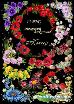 Набор цветочных уголков для дизайна на прозрачном фоне - В ожидании весны