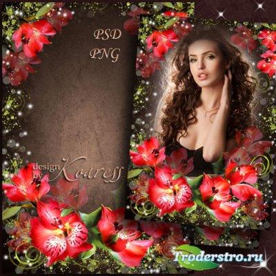 Женская рамка для фотошопа с красными цветами - Прекрасные цветы