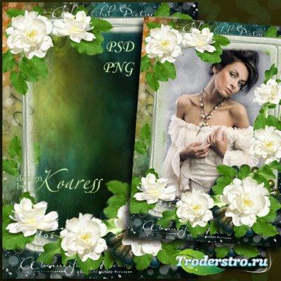 Рамка для фотошопа - Нежные розы для винтажного фото