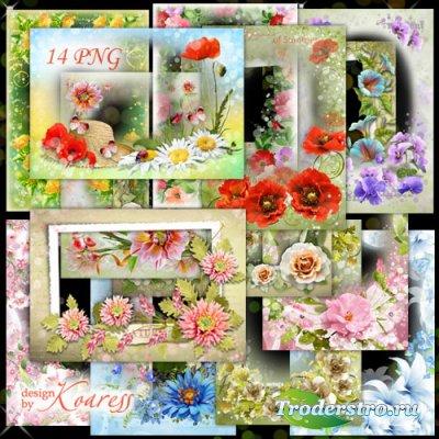 Цветочные png рамки - Нежный лета аромат