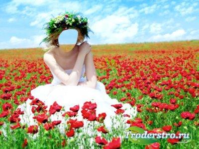 Женский шаблон - Эффектная фотосессия в поле маков