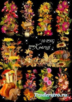 Набор осенних кластеров и бордюров для фотошопа с листьями, цветами, грибам ...