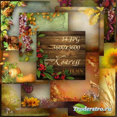 Осенние фоны для дизайна с грибами, ягодами, листьями - Яркая осень