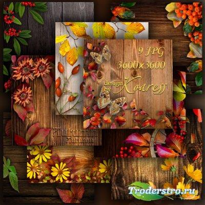 Осенние фоны с цветами, ягодами, листьями и другими атрибутами осени