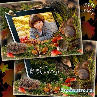 Детская рамка для фотошопа с белочкой и ежиком - Планшет в лесу