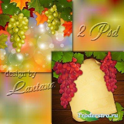 PSD исходники - Винограда налитая гроздь