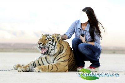 Шаблон для фото - Рядом с сильным тигром