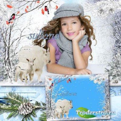 Зимняя фоторамка - Белые, пушистые козочки