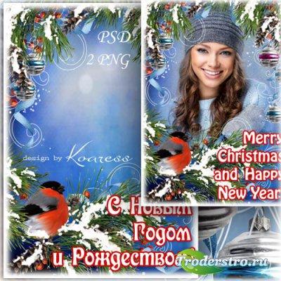 Праздничная открытка-фоторамка со снегирем - С Новым Годом и Рождеством