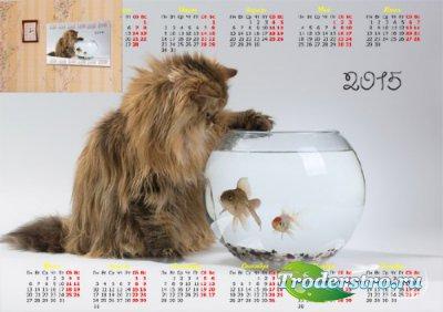 Настенный календарь - Котенок над рыбками