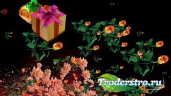 Футаж с летящими розами и подарками