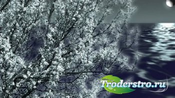 Футаж - Весенний пейзаж