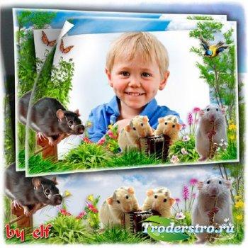 Детская рамка для фото - Мышиный квартет