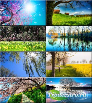 Сборник обоев - Вот и весна! #169