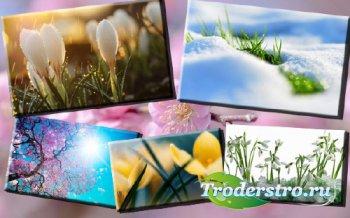 Клипарт растровый - Пришла весна