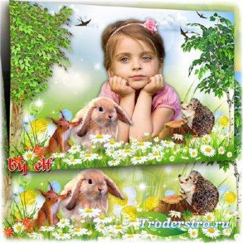 Детская рамка для фото - Лесные жители