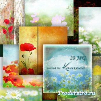 Цветочные фоны для дизайна с луговыми цветами - Красота родных полей