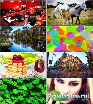 Красочные обои - Коллекция на разные темы #297
