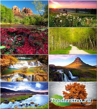Подборка обоев - Вся красота природы #98
