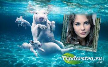 Рамка для фотомонтажа - Свинки под водой