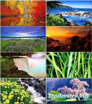 Красочные обои - Красота природы #247